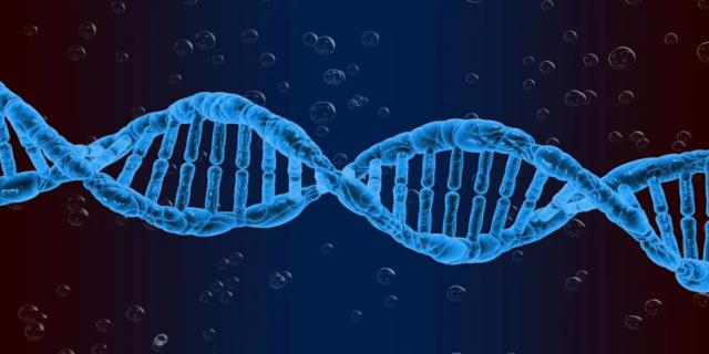 """Coronavirus, i ricercatori italiani: """"Trovati i geni che aumentano il rischio"""""""