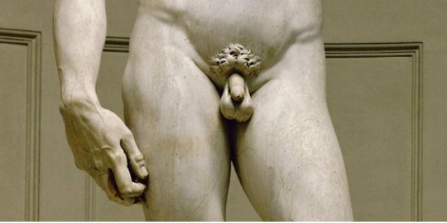 il pene e i testicoli sono asimmetrici