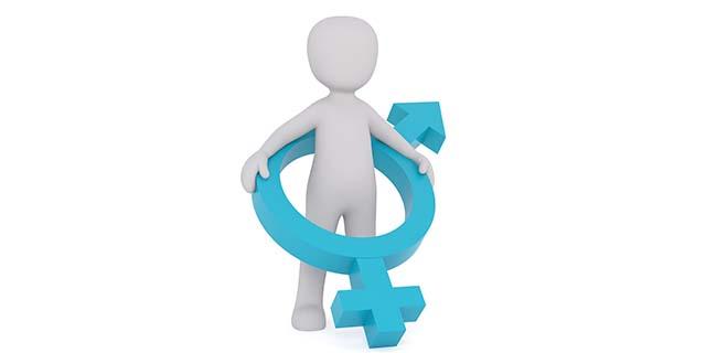 Ermafroditismo, cosa significa essere sia uomo sia donna