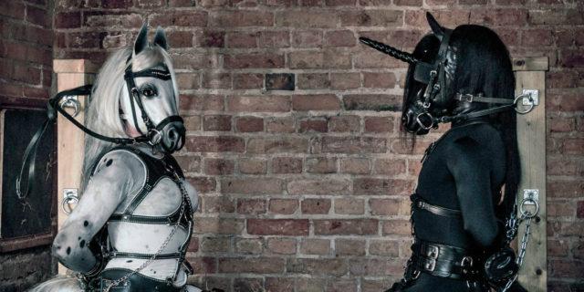 Pony-play: il gioco erotico in cui uno dei due fa... Il cavallo
