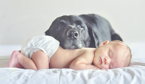 10 Motivi Per I Quali È Meglio Far Crescere I Bambini Con Gli Animali
