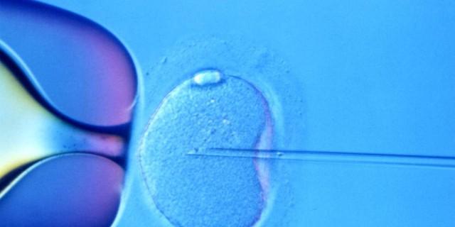 Fecondazione in vitro: cos'è e come si fa?