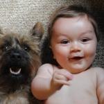 Come Gestire i Primi Incontri tra un Neonato e l'Animale Domestico
