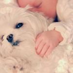 I Bambini Che Crescono Con Un Cane Hanno Meno Probabilità di Ammalarsi