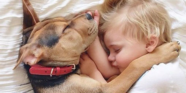 Cani e bambini: consigli preziosi per far nascere un'amicizia davvero speciale