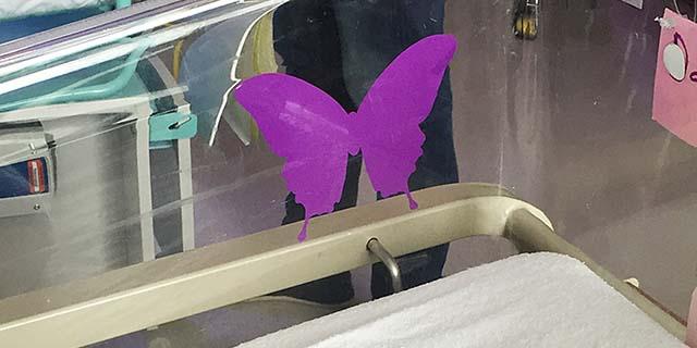 Cosa significa se sulla culla di un neonato c'è una farfalla viola