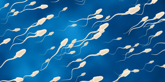 """""""Io, donatore di sperma, vi racconto perché lo faccio e a cosa fare attenzione"""""""