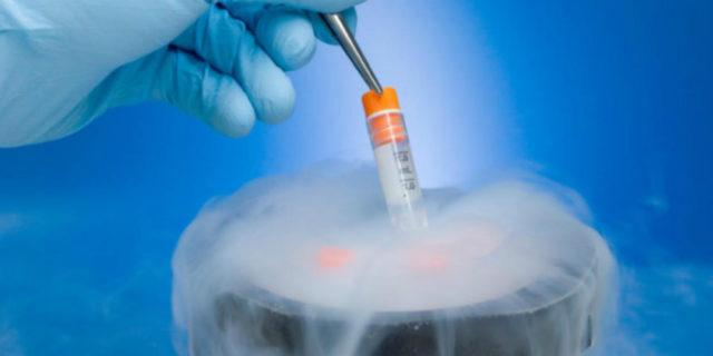 """""""Dovrei congelare i miei ovuli?"""", la risposta della scienza"""