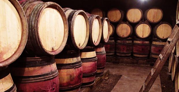 5 curiosità sul vino, aD hOC