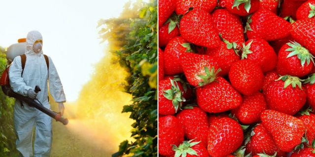 Frutta e Verdura Tossica: i 12 Peggiori Tipi che Probabilmente Mangi Ogni Giorno