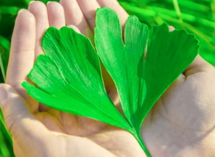 Le 10 sostanze naturali che fanno tornare la voglia di fare l'amore