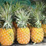 Mangiare ananas fa bene? 4 proprietà ma anche 3 controindicazioni che non sai