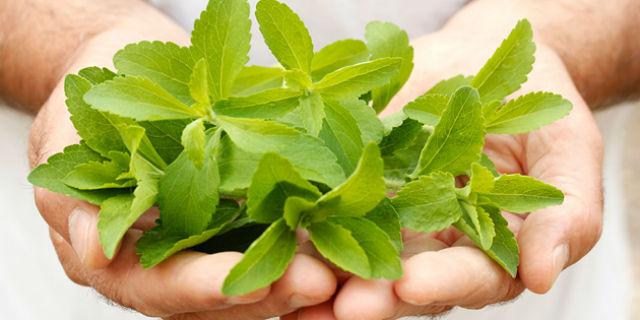 la stevia come dolcificante naturale
