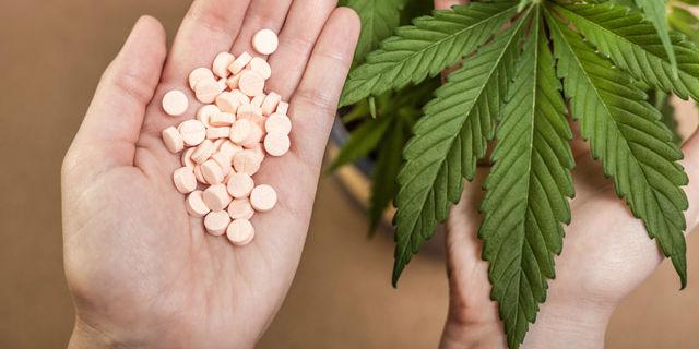 Cannabis terapeutica: cosa cura, i costi e come si acquista