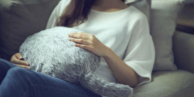 Qoobo, il robot-gatto che ti aiuta a contrastare i dolori