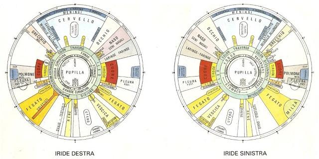 Mappa Iridologica