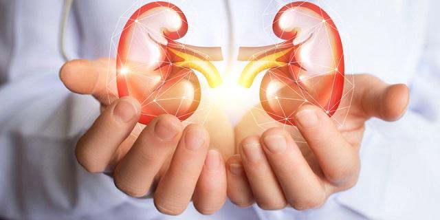 Nefrite: sintomi e cura