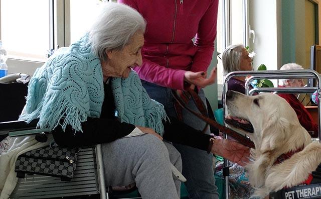 Pet Therapy: 5 storie di animali che hanno salvato la vita ai loro padroni