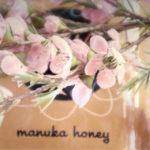 Miele di manuka: benefici e proprietà terapeutiche