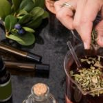 Curarsi con le piante funziona? Cosa dice la scienza riguardo la fitoterapia