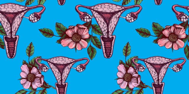 Perché nessuno ci parla di María Teresa Ferrari, colei che curò le nostre vagine?