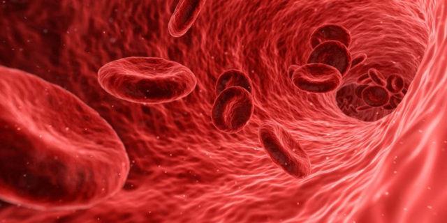 Anemia mediterranea: cos'è la malattia che distrugge i globuli rossi nel sangue