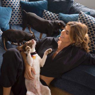 Dog sport, come si pratica e i benefici dell'allenamento fatto con i nostri cani