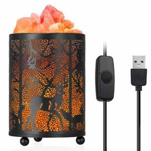 Zanflare Lampada di Sale dell'Himalaya, Ingresso USB, Lampada da Notte con Dimmer, Luce di Sale Rosa di Purificazione dell'aria, Cesto in Metallo Design di piccoli animali, Regalo Perfetto