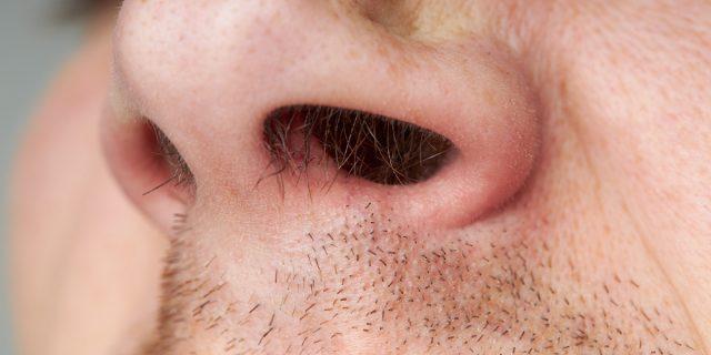 Perché tagliarti i peli del naso potrebbe essere un'idea pericolosa