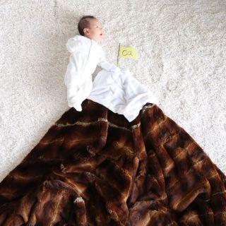 Le Incredibili Fotografie da Libro di Favole di Una Figlia Mentre Dorme