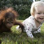 Bambini Che si Comportano Come i Loro Amici a 4 Zampe