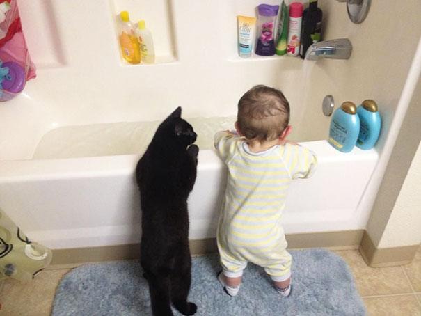 Fotografie che ti Dimostrano l'Importanza di Avere un Gatto per i Bambini