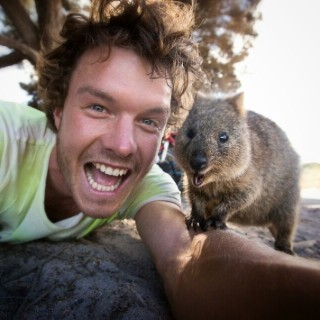 In Posa con il Quokka: Ecco la Nuova Frontiera dell'Autoscatto che arriva dall'Australia