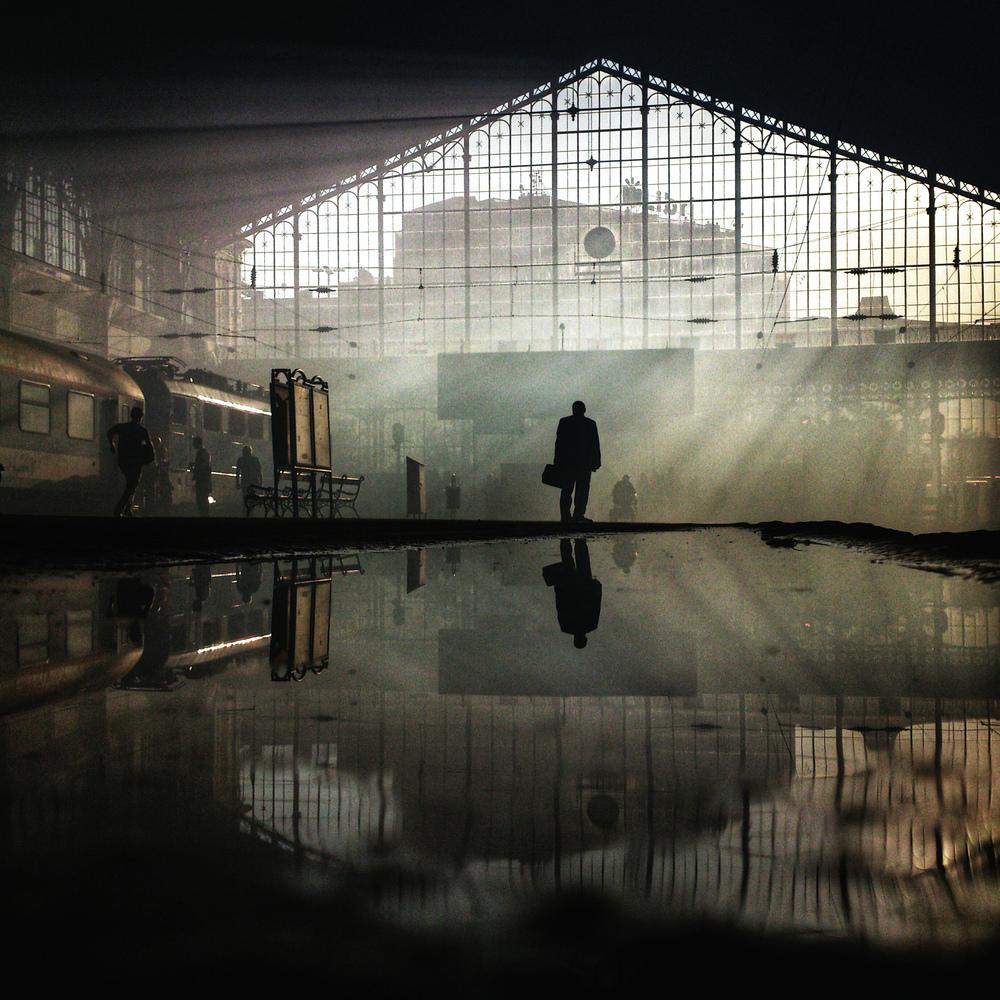 Le 20 Fotografie Più Belle del Mondo Scattate con uno Smartphone