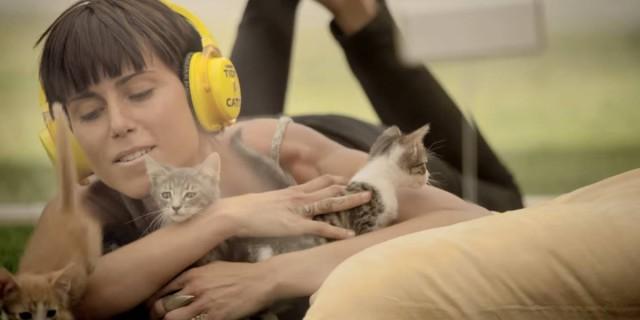 Terapia dei Gattini: Come Superare lo Stress Grazie ai Felini