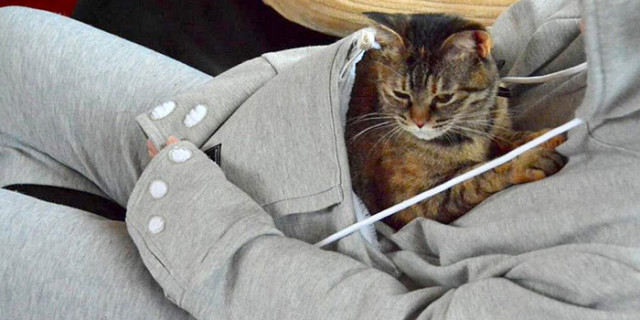 Mewgaroo: la Felpa per Tenere Sempre con Te il Tuo Gatto