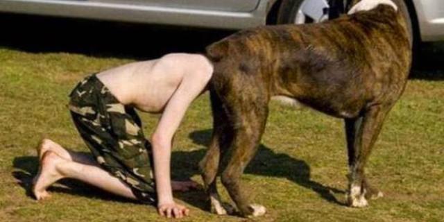 """Che Tempismo! Foto di Cani Scattate """"Inavvertitamente"""" nel Momento Giusto"""