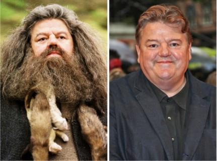 Gli Attori di Harry Potter 14 Anni Dopo il Primo Capitolo della Saga in 22 Scatti!