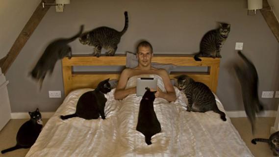 Il Vostro Gatto ha Idea di Cosa sia la Privacy? Questi 30 Felini Sembra Non lo Sappiano!