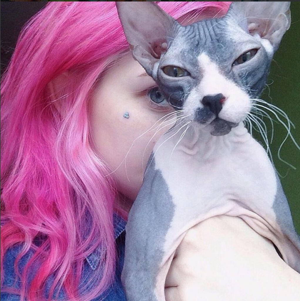 Rainbow Cat: la Nuova Acconciatura che Spopola su Instagram in 10 Foto!