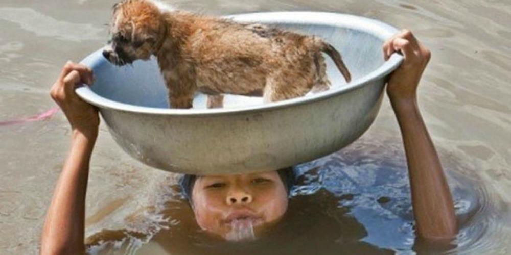 17 foto di bambini che vi faranno tornare la fiducia nell'umanità