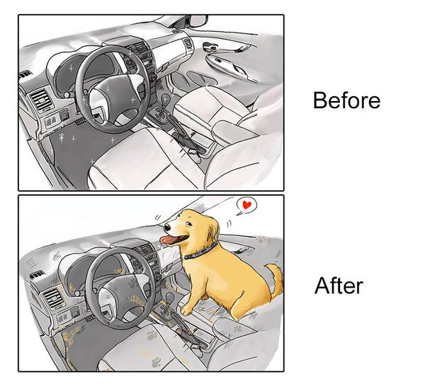 9 immagini che mostrano come cambia la vita prima e dopo un cane