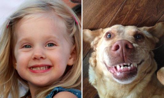 15 spettacolari foto che dimostrano che gli animali provano emozioni simili ai bambini