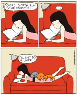 15 cose che solo chi vive con un gatto può capire!