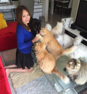 """""""Faccio la mamma di gatti a tempo pieno"""": ecco la gattara che sta facendo impazzire instagram!"""