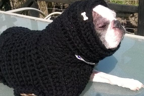 20 cappottini e abiti per cani che sembrano outfit umani