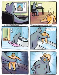 Prova a metterti nei panni del tuo gatto: ti sentiresti così