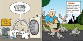 Attenti al calzino