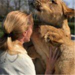 Gli abbracci delle leonesse a Michaela: l'emozione in un video