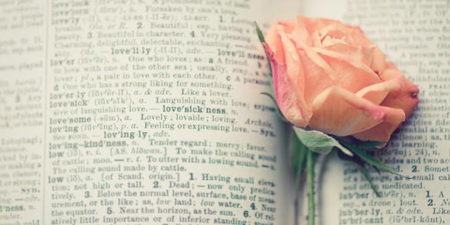 Storie d'Amore: Quando i Libri si Ispirano alla Realtà